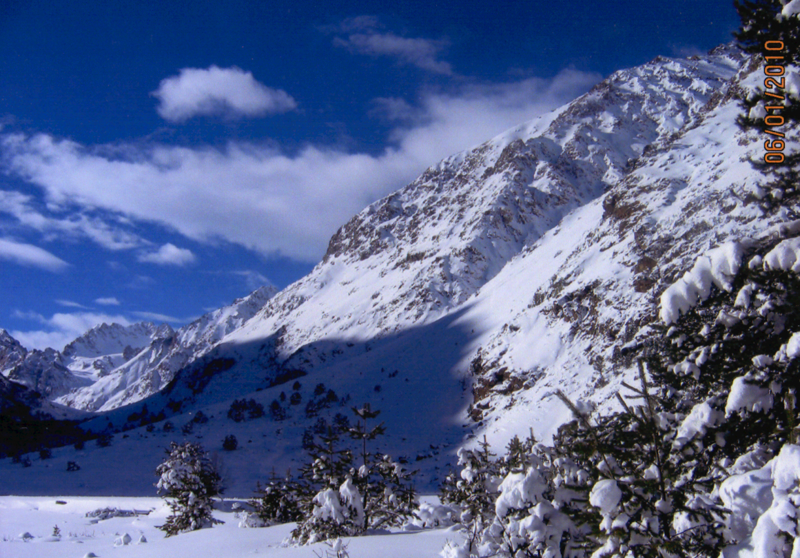 bashil-in-the-winter__0004-1-1