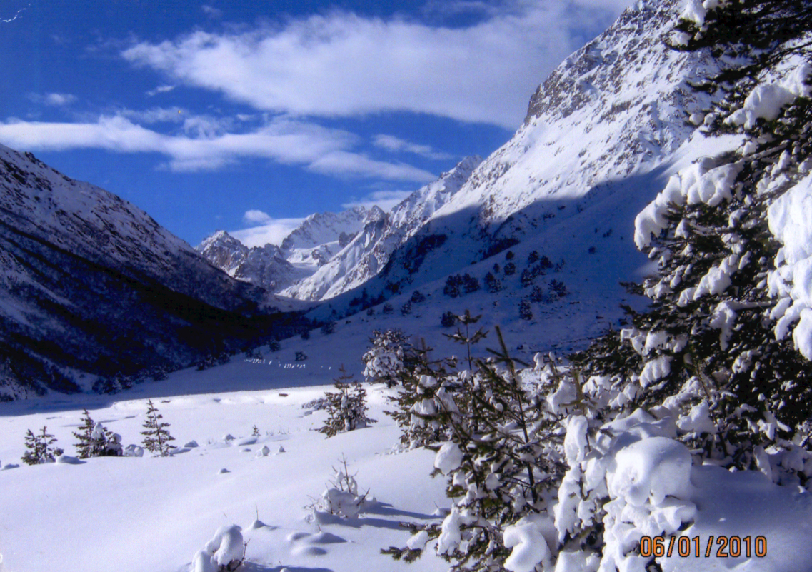 bashil-in-the-winter__0005-0-1