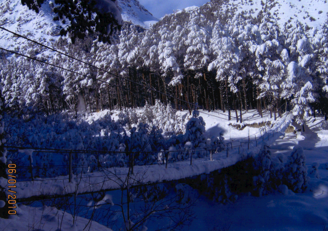 bashil-in-the-winter__bridge